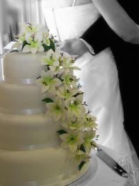 Wedding Cake in Hampshire